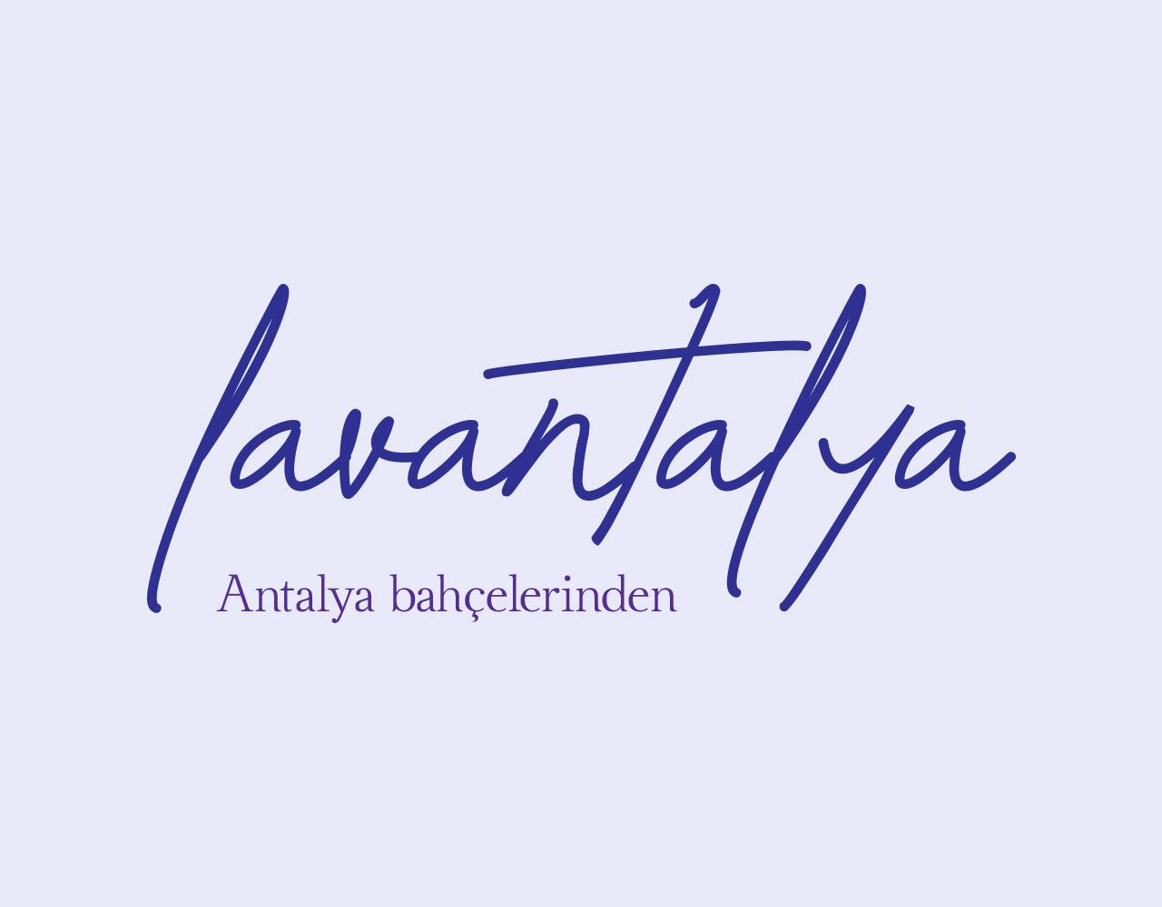 logo_lavantalya